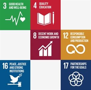 FN's verdensmål  -  en bæredygtig udvikling